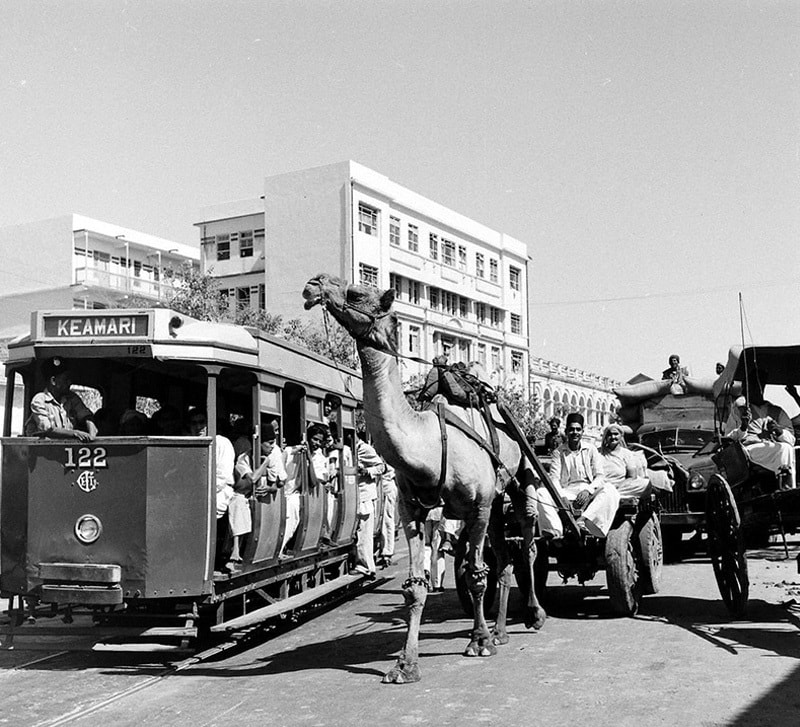 Slow and steady: A camel cart races past a tram in Karachi in 1950.