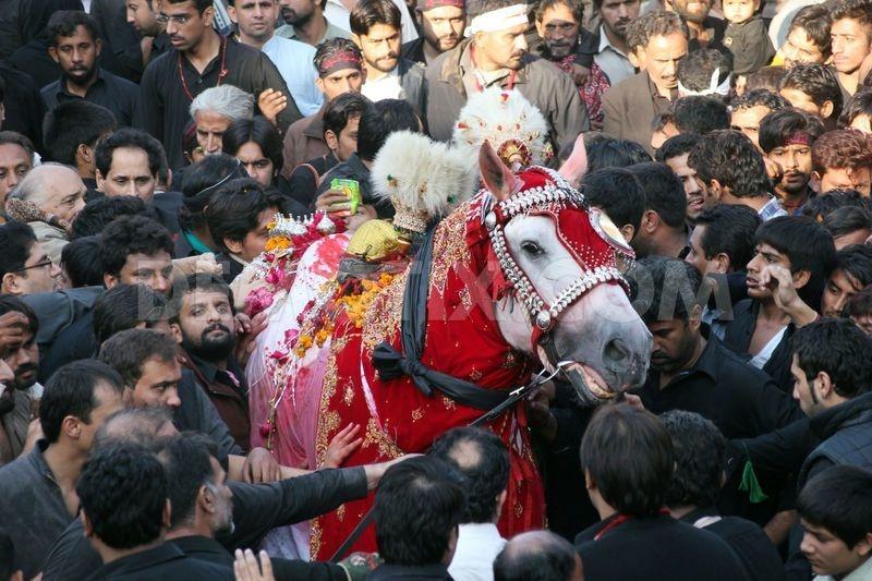 A Shia religious procession in Lahore.