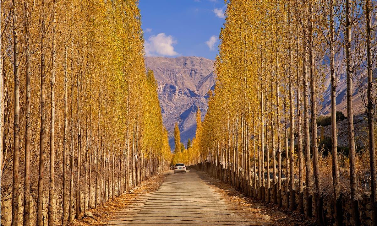 خپلو کو جاتی سڑک — فوٹو سید مہدی بخاری