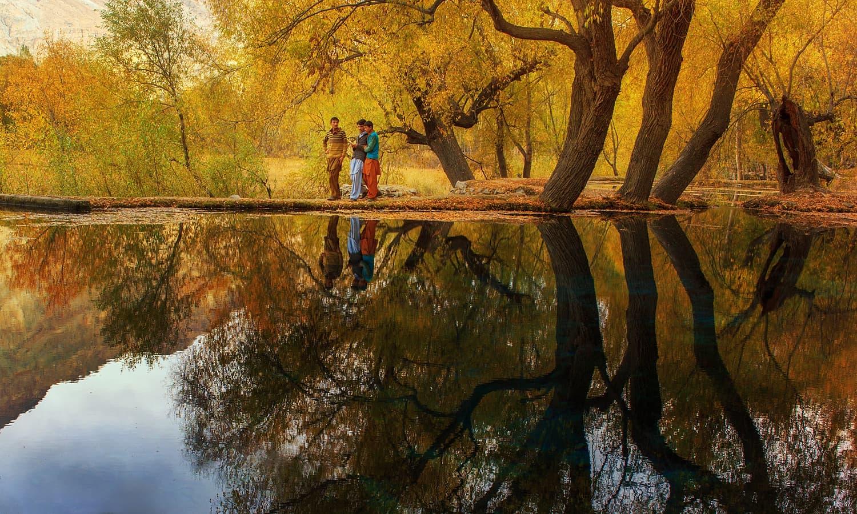 Jungle in Khaplu. — S.M.Bukhari