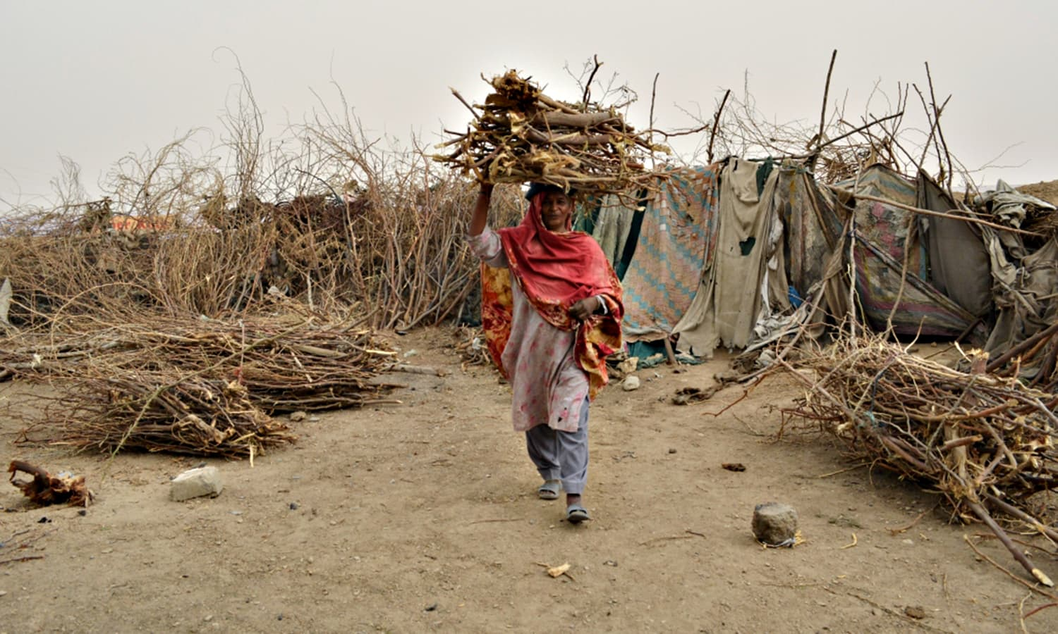 Forty year old Roshan Khatoon carries fuel wood back from the hills to Sindhabad slum to cook for her family.