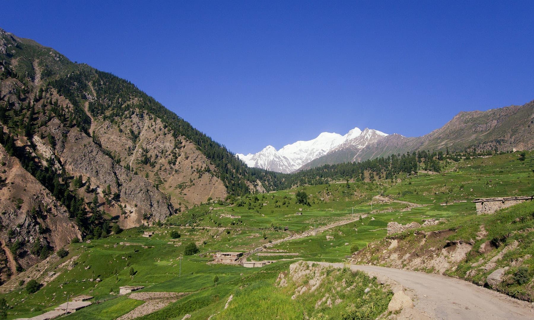 راما گاؤں اور نانگا پربت — فوٹو سید مہدی بخاری