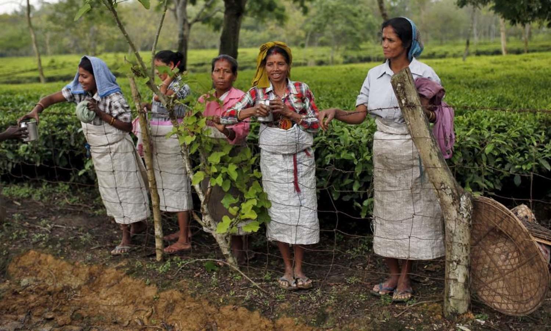Tea garden workers rest during a tea break inside Aideobarie Tea Estate in Jorhat in Assam. — Reuters