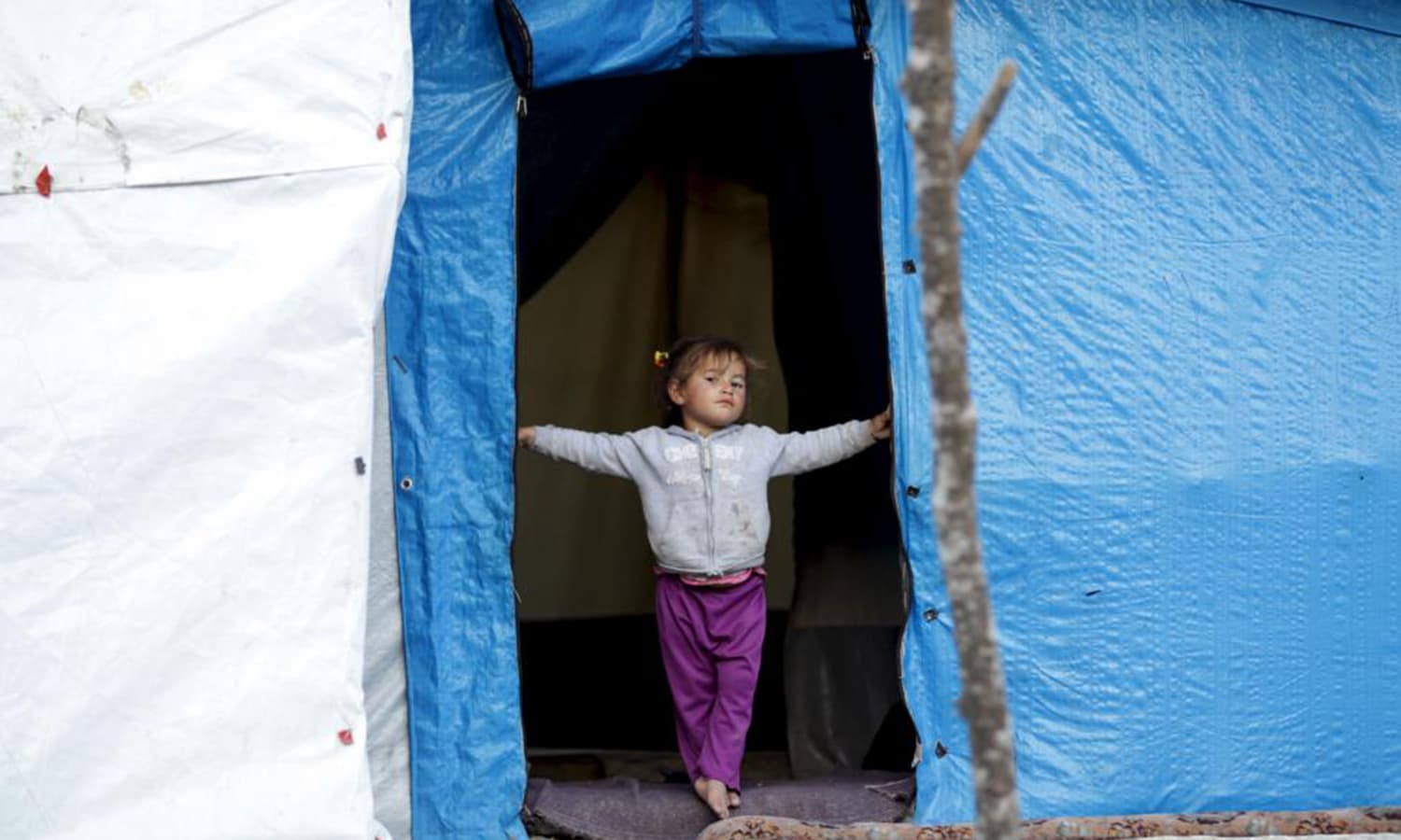 An internally displaced girl stands at the entrance of her tent in Rihaniyya camp, near the Syrian-Turkish border in Jabal al-Turkman. — Reuters