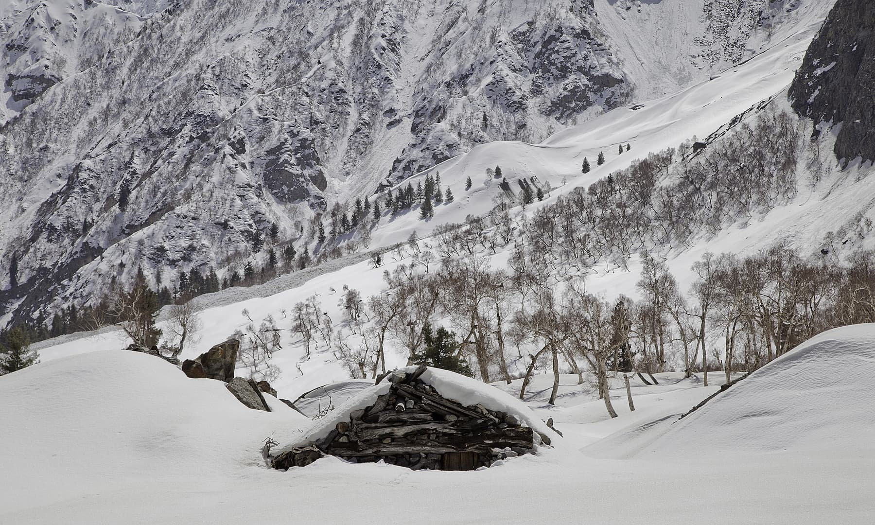 Naltar in winter. — Syed Mehdi Bukhari