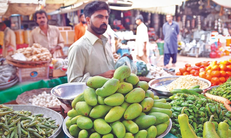 The Sindhri mango kairi. / Photos by Fahim Siddiqi/White Star