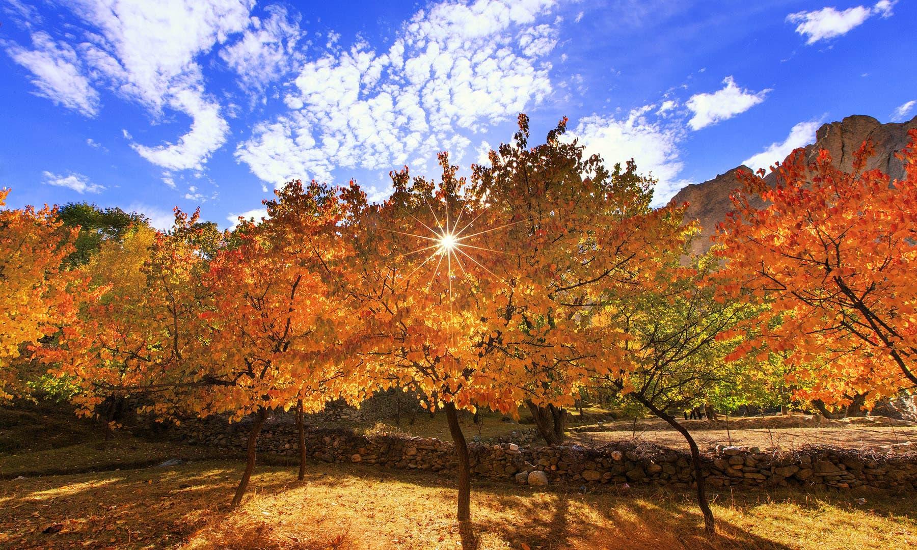 سورج ستارہ — فوٹو سید مہدی بخاری