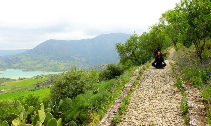 Zen. —Photo by author