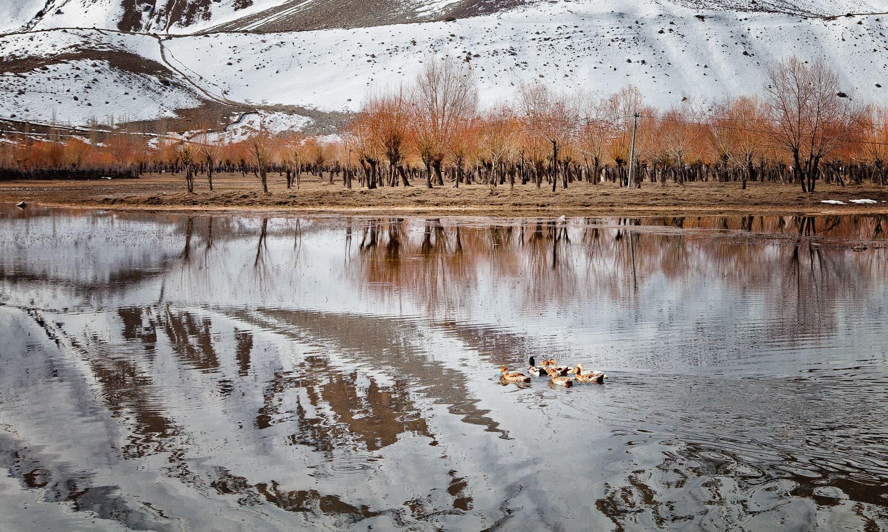 — فوٹو سید مہدی بخاری