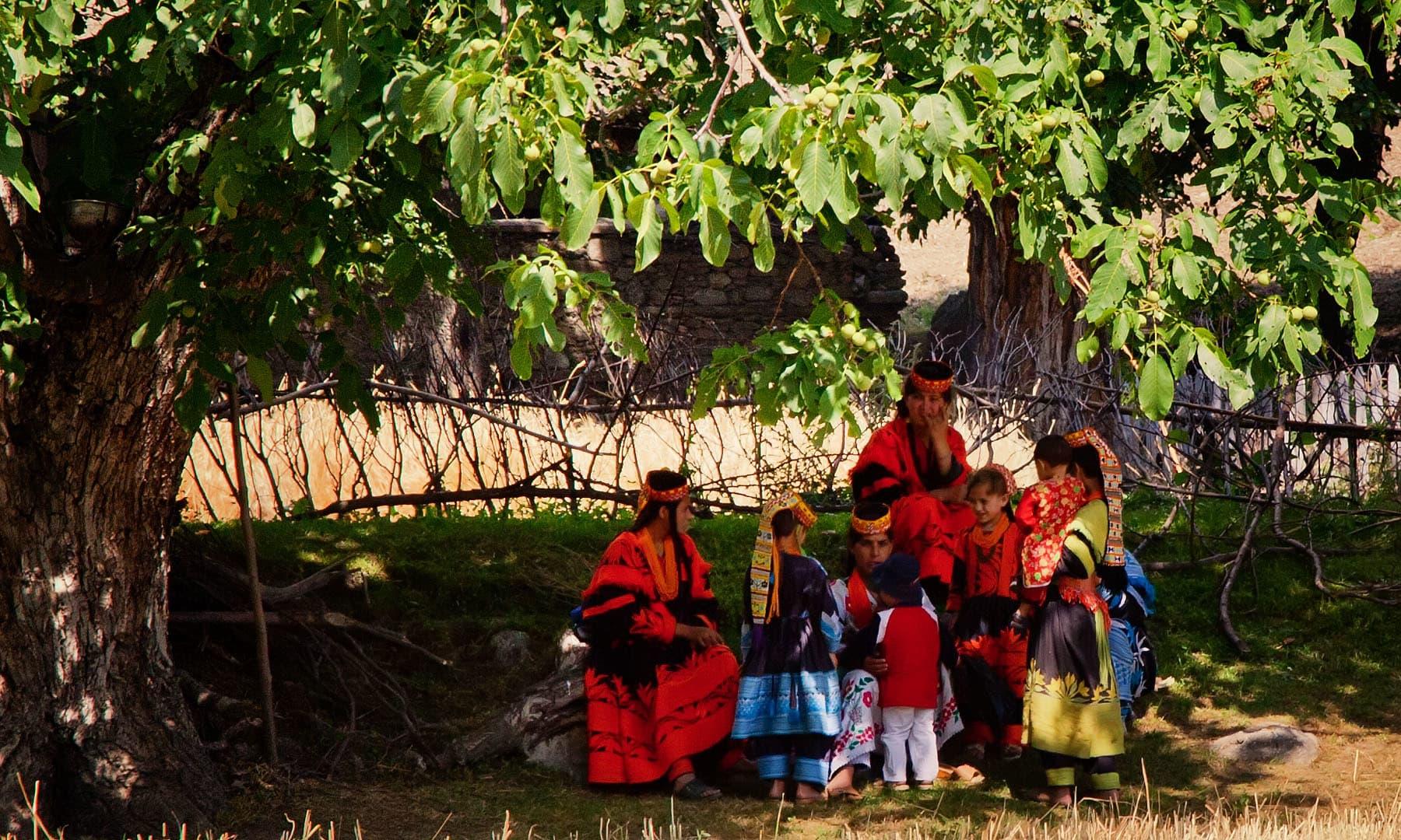 کالاشی لڑکیاں— سید مہدی بخاری