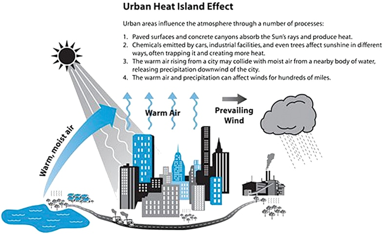 the effects of landscape features temperature precipitation and vegetation on the primary industries The national climate assessment effects on climate processes land use and land cover the primary source related to land use has been the.