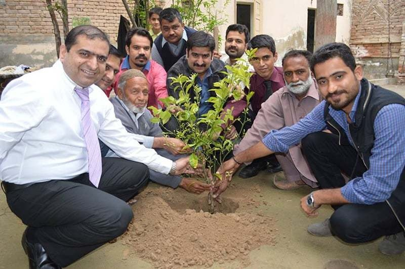 One more tree planted.