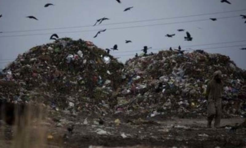 Environmental problems claimed 45,000 lives in Sindh in 2009
