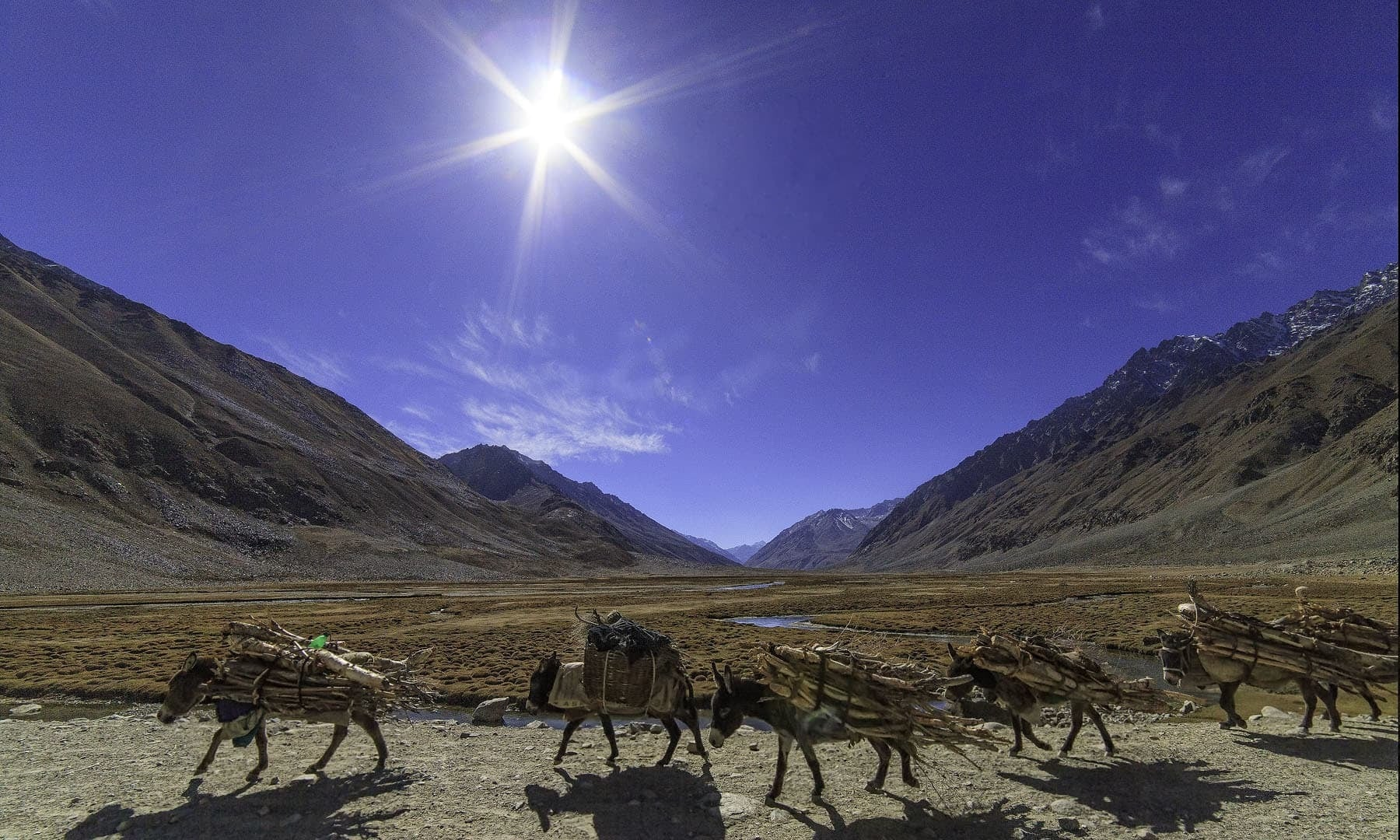 Near Shandur Pass.