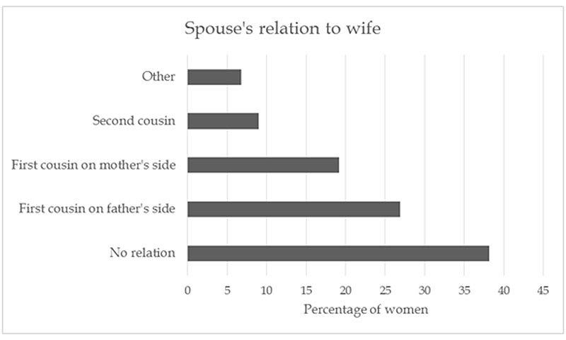 Source: Pakistan Demographic and Health Survey, 2012-13.