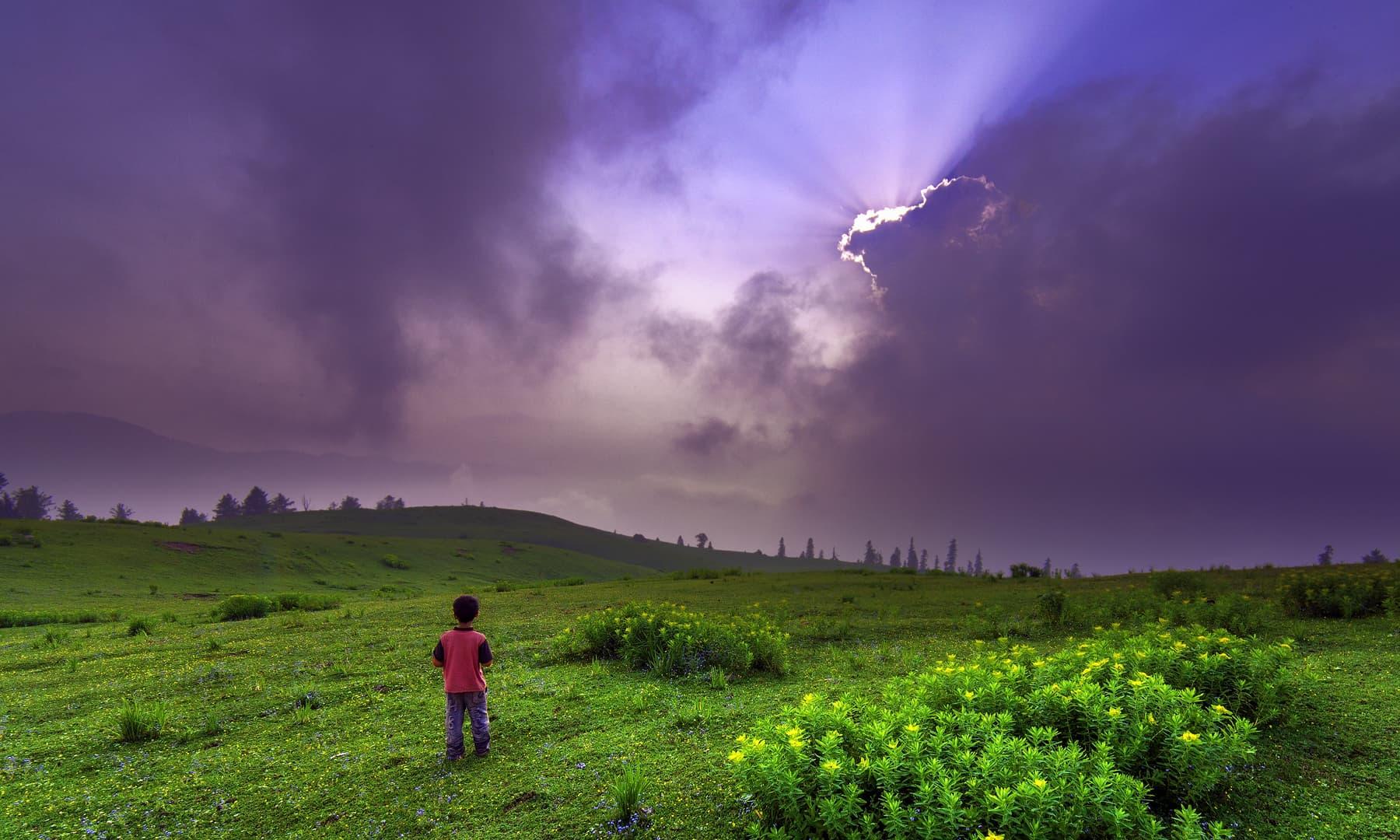 پائے میڈو.— فوٹو سید مہدی بخاری