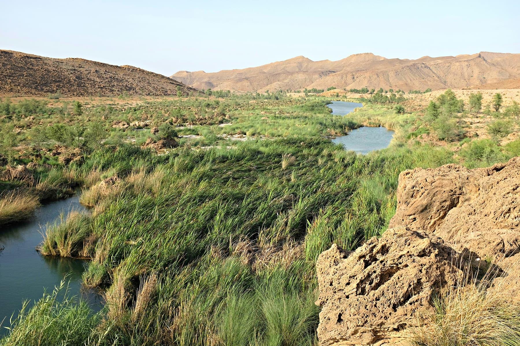 A view of the area around Peeplasar.