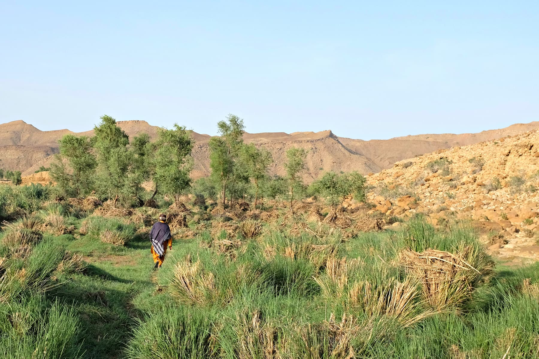 The greenery in the area is proof of the wonders that a stream of water could do to an arid zone.