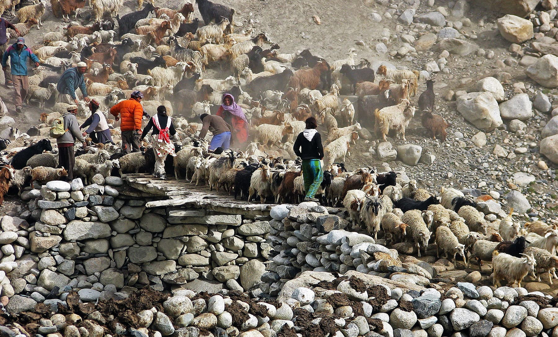 Life in Shimshal is tough and both the men and womenfolk tend to the herds.