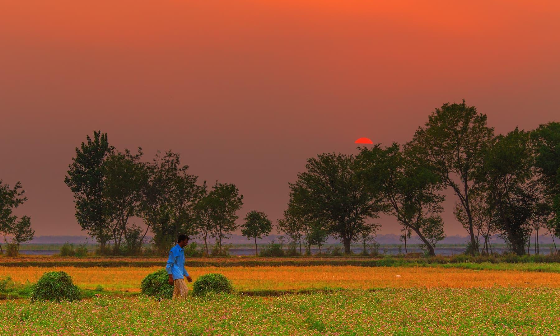 مرالہ کے نزدیک ایک گاؤں.— فوٹو سید مہدی بخاری۔