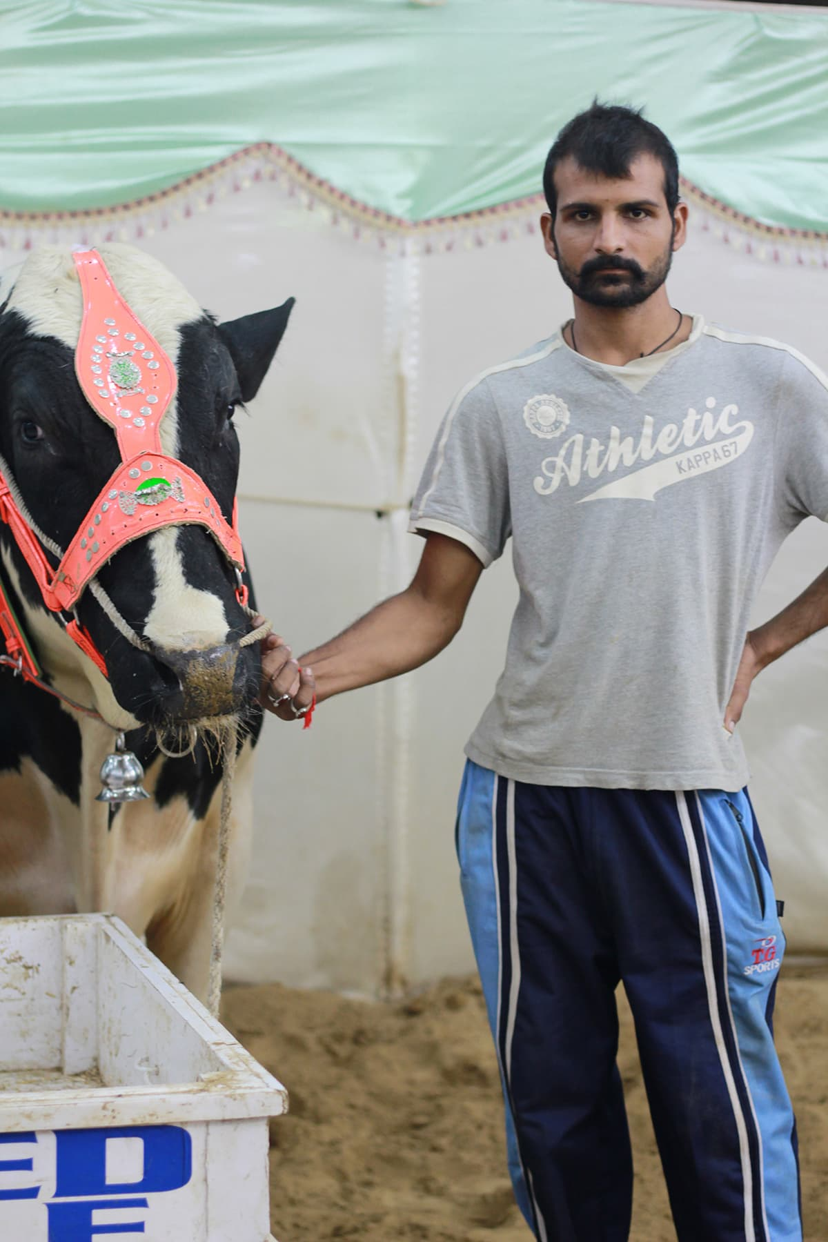 Amir poses with his cow. —Yumna Rafi