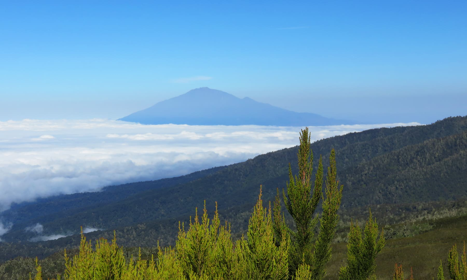 Our first glimpse of Mount Meru – Kilimanjaro's little brother, which then became a constant throughout the journey.