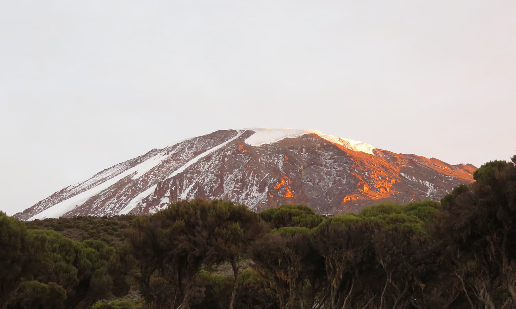 The morning after – waking up to a great view: sunlight reflecting off Kilimanjaro.