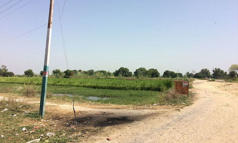 The field where police vehicles were burnt