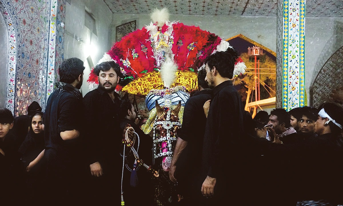 Mourners preparing Zuljanah for a Muharram procession in Sehwan   Arif Mahmood, White Star