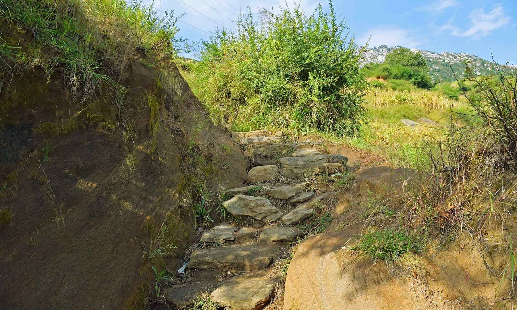ایلم گاؤں سے رام تخت تک جانے والا کچا راستہ۔