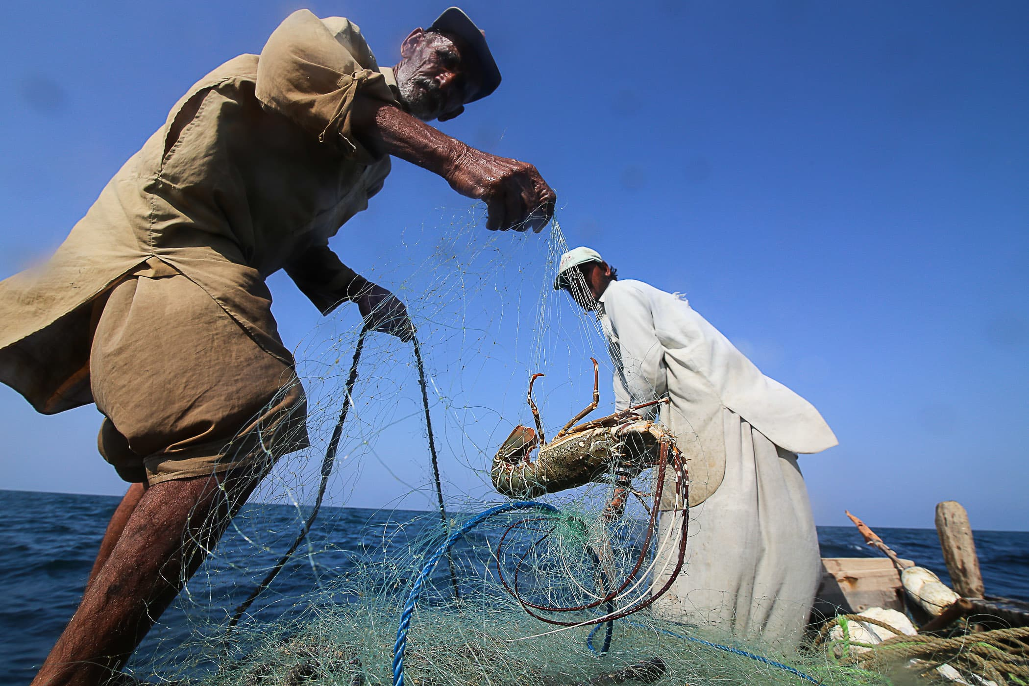 Chacha Majeed shows a lobster trapped in their net.