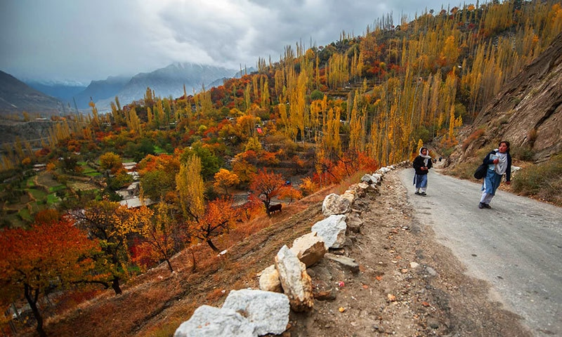 Fall foliage — The changing colours of Hunza