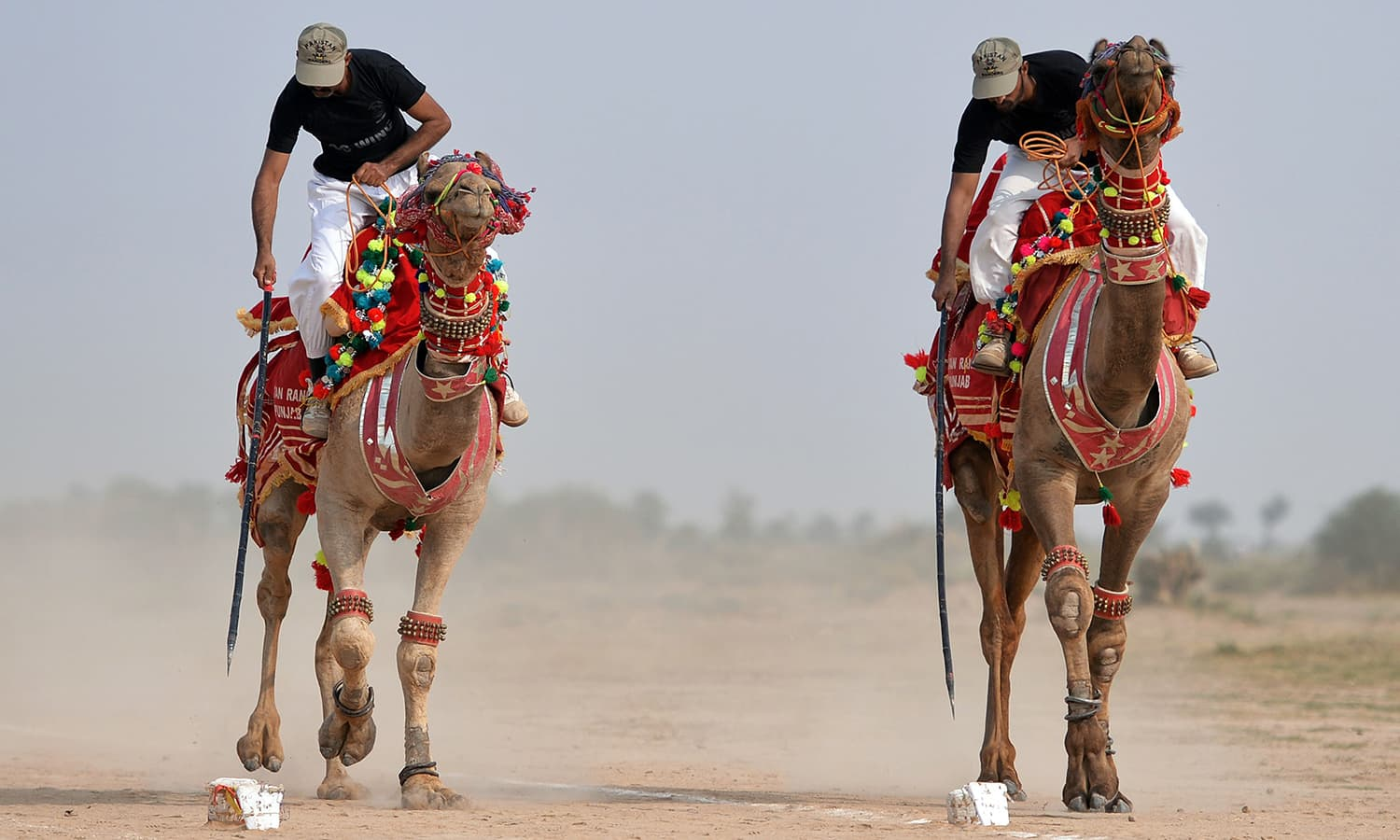 In this photograph taken on November 13, 2015, members of Pakistan Desert Rangers, perform a tent pegging routine in Moj Garh, 100 kilometres east of Bahawalpur in Punjab province. —AFP