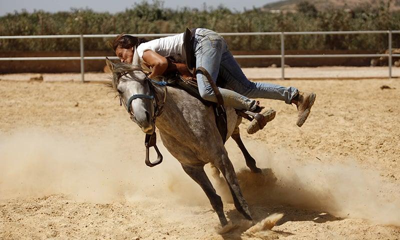 Raja Kheir battles to saddle on a stray horse ─ AFP