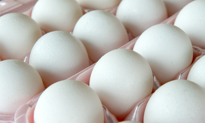 انڈوں کے جسم پر مرتب ہونے والے 11 اثرات