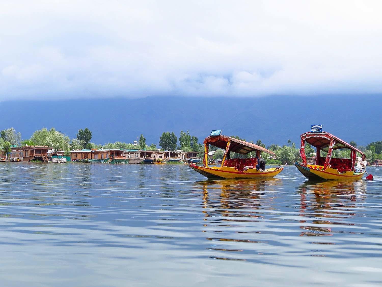 Shikaras, Dal Lake, Srinagar.