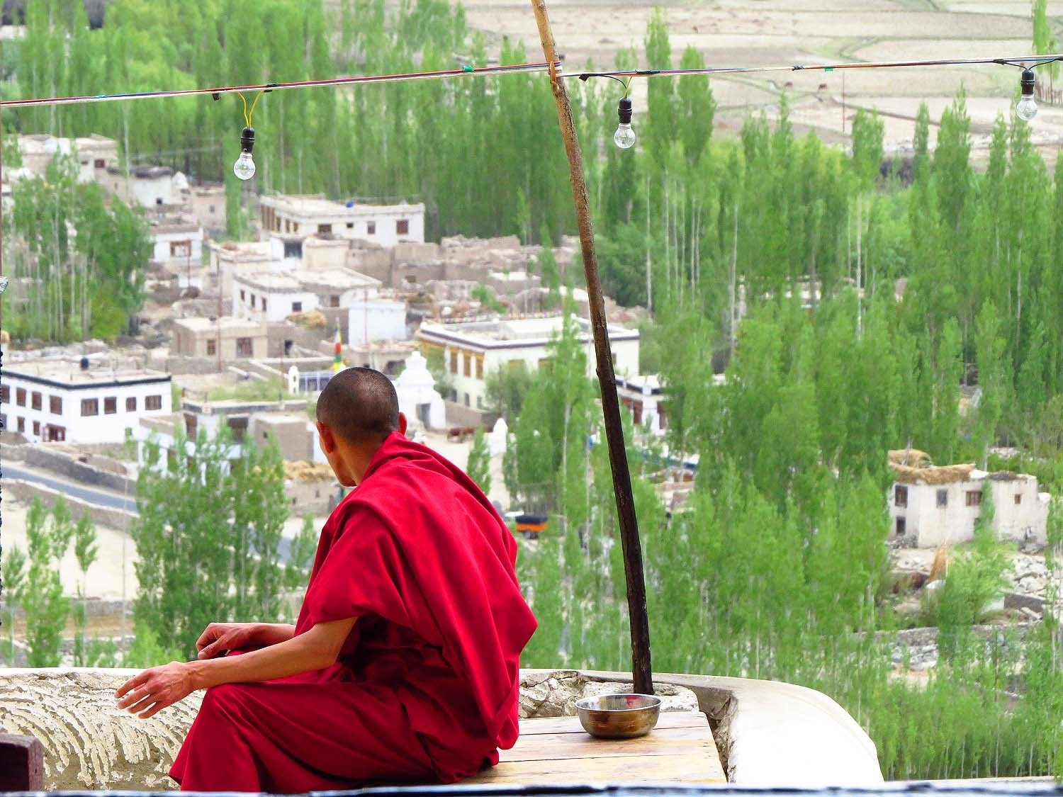 Monk overlooking the valley, Thiksey Monastery, Ladakh.