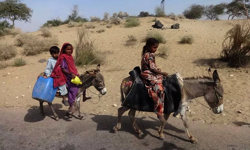In Thar, clean drinking water is scarce and waterborne diseases are becoming increasingly common. —Photo by the author
