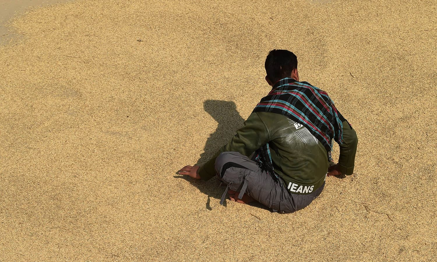 "Ahmed spreads rice grains to dry. ""I don't regret speaking out, but since then, people have looked at me with strange eyes,"" the 16-year-old laments. — AFP"