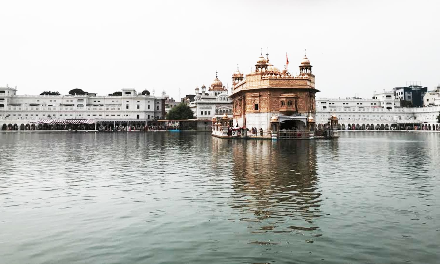 The Golden Temple. —Photo by Fatema Imani
