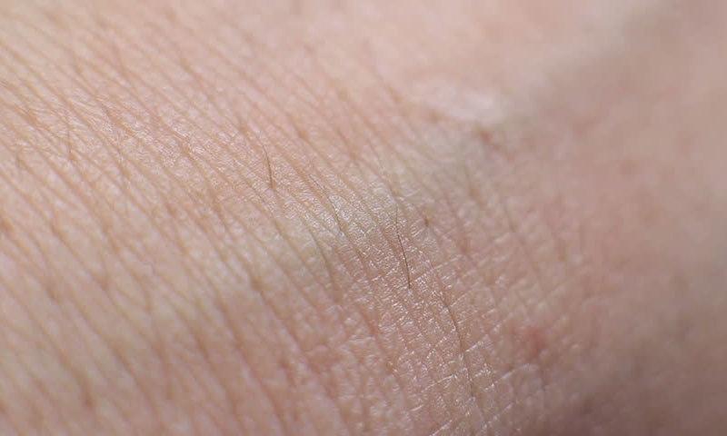 انسانی جلد کے 11 حیرت انگیز حقائق