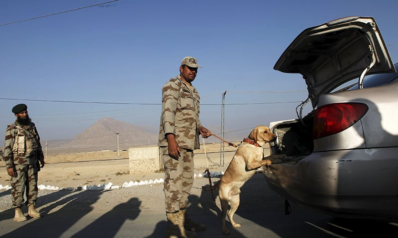 A soldier and his dog search cars traveling at a checkpoint on the main highway outside Quetta. -Reuters/File