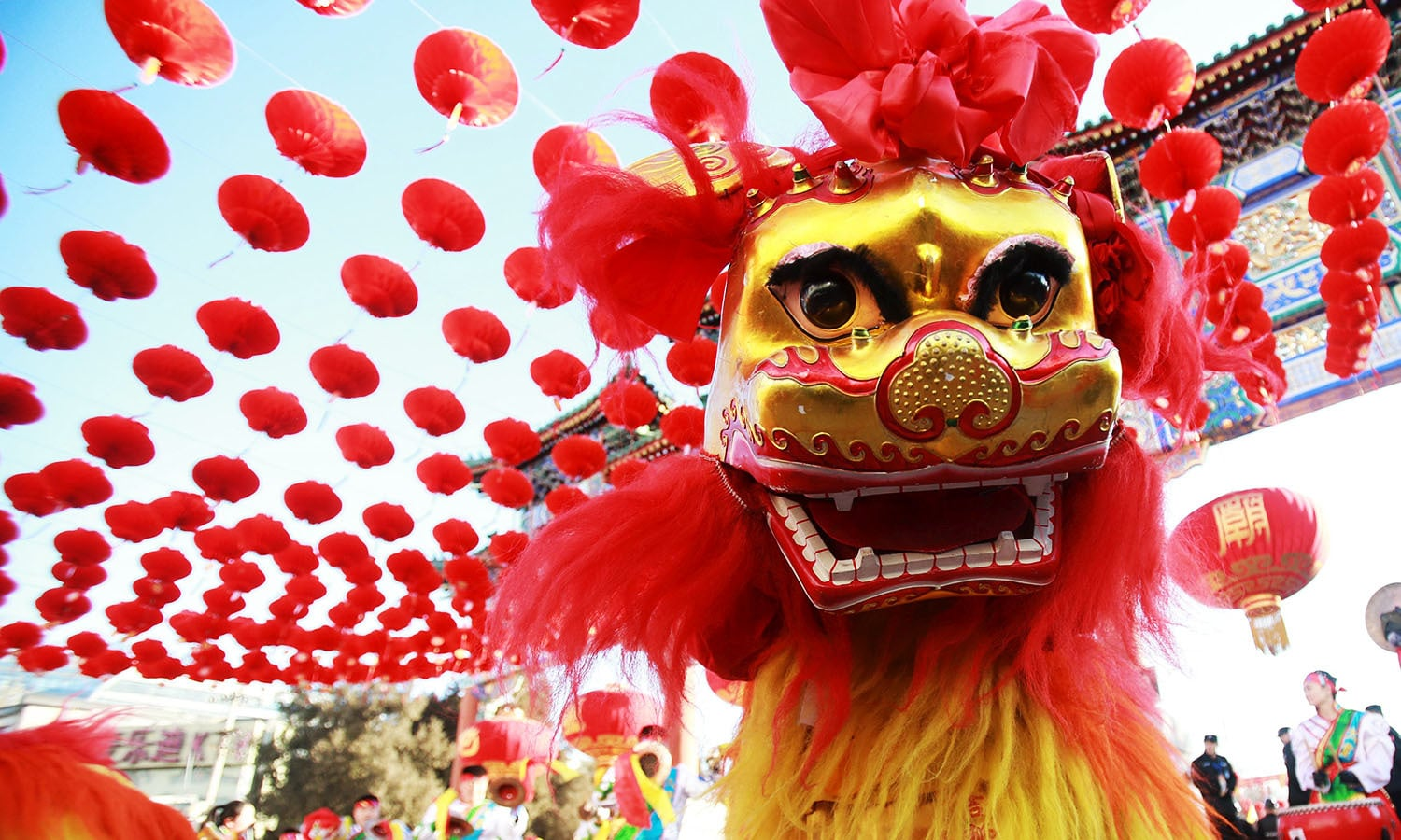 traditional dancers perform the lion dance during the opening ceremony of a temple fair - Chinese New Year Celebration
