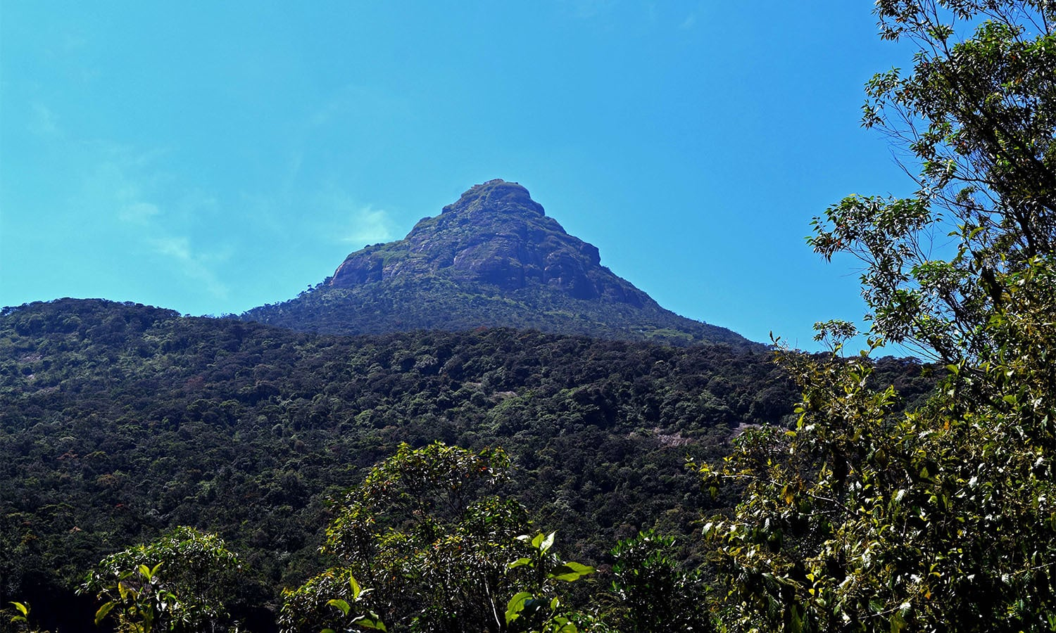 View of the Adam's Peak from halfway. ─ Photo by the author