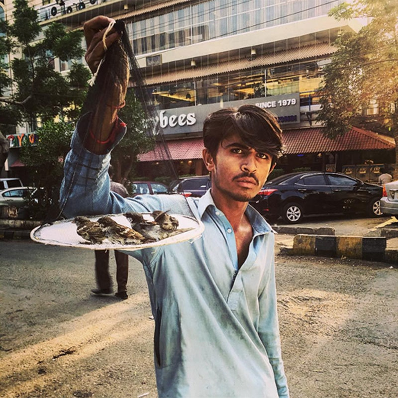 Afeef was offered some sparrows on the road. —Photo provided by author