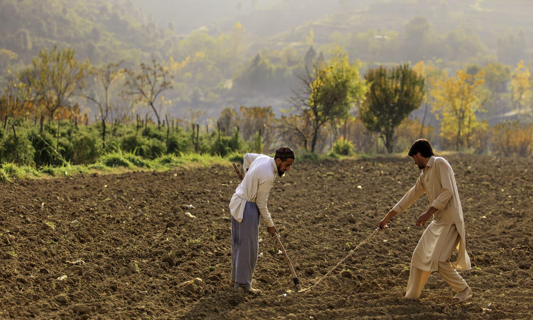 کبل، سوات. — فوٹو سید مہدی بخاری۔
