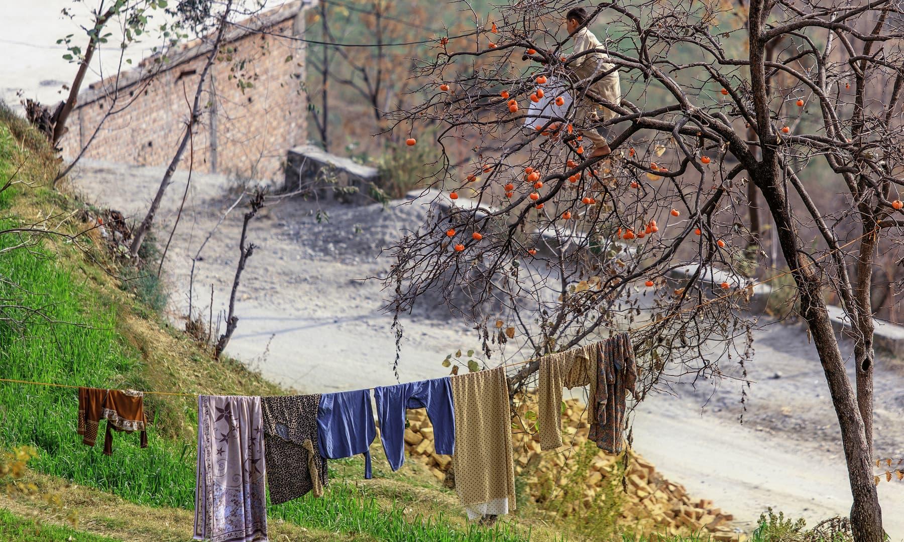 کبل میں ایک گھر. — فوٹو سید مہدی بخاری۔