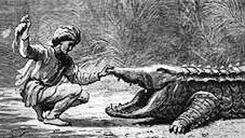 15 ویں صدی کا ایک خاکہ جس میں مزار کا متولی مگرمچھ کو کھانا کھلا رہا ہے۔