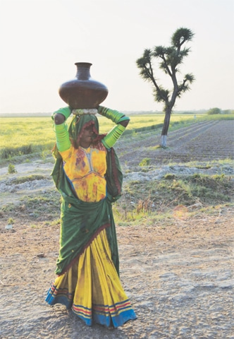 Most areas where lower caste Hindus live have no basic facilities, and women have to walk miles everyday to fetch water for their families.