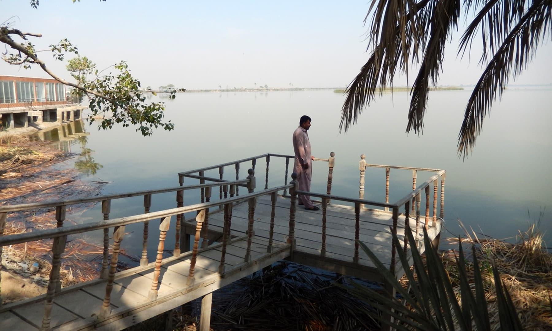 ہالیجی جھیل—تصویر ابوبکر شیخ